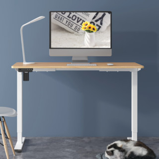 FitStand FS电动升降桌 1.2*0.6m 白色+原木色