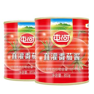 屯河 直灌番茄酱 850g*2罐