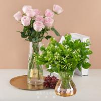 REFLOWER 花点时间 康乃馨 茉莉花 花材 鲜花速递 原产地鲜花直采
