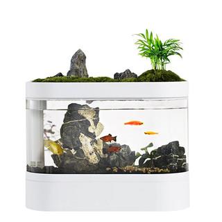 画法几何 智能鱼缸水族箱 C500懒人免换水小型 桌面鱼缸 办公室生态家用金鱼缸 标准版