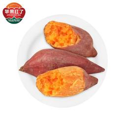 苹果红了 福建六鳌红心蜜薯 1斤中小果
