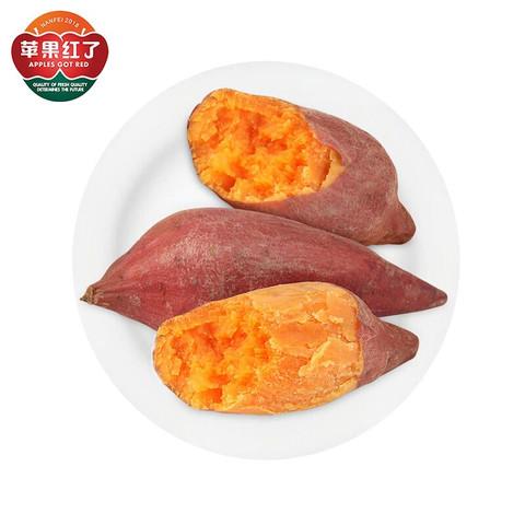 PLUS会员:苹果红了 福建六鳌红心蜜薯 1斤中小果