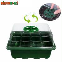 Bloombagz幼儿园种植多肉叶插育苗穴盘保温盒钵蔬菜种育苗培养盒