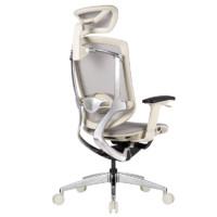Ergoup 有谱 致炫 人体工学电脑椅