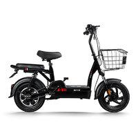 PALLA 新大洲 TDT13 电动自行车