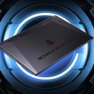TERRANS FORCE 未来人类 X521 15.6英寸 游戏本 黑色(酷睿i7-11800H、RTX 3060、16GB、1T PCIe SSD、Laptop 240Hz)