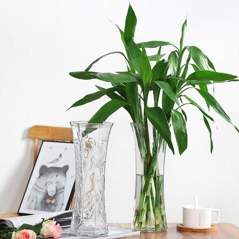 特大号玻璃花瓶家用创意透明水养富贵竹百合花瓶客厅插花干花摆件