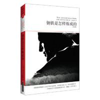《世界文学文库059·钢铁是怎样炼成的》