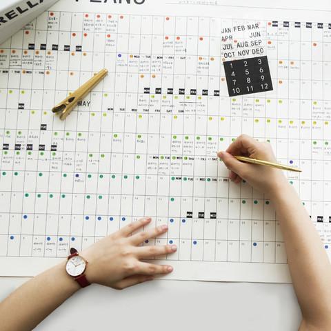 kinbor 自填全年计划表年历日志表日程表月历日历手帐全年本