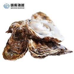 wecook味库鲜活乳山生蚝 毛重5斤装海蛎烧烤食材 净4斤装140-120g/只