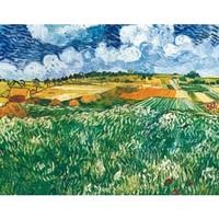 buybuyART 买买艺术 梵高《奥维森平原》50*40cm 装饰画 美术纸