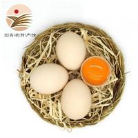 PLUS会员:小覃同学 农家土鸡蛋 45g*10枚