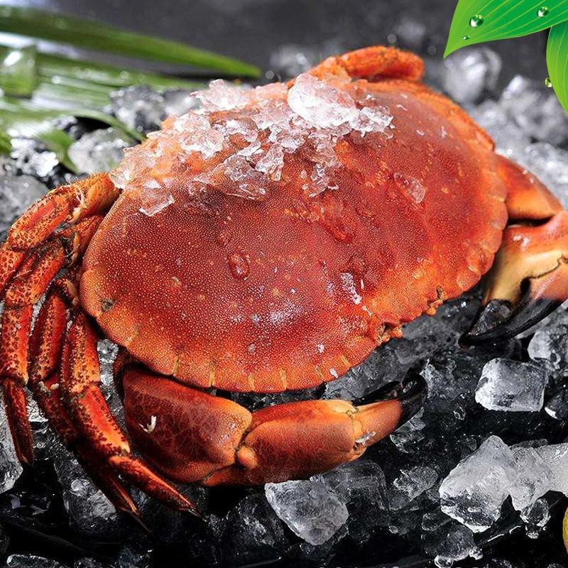 PLUS会员 : 星河湾 面包蟹/黄金蟹 400g* 5只