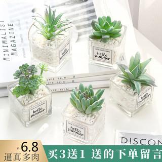 北欧仿真绿植物仙人掌多肉假花装饰摆件客厅摆设办公室桌面小盆栽