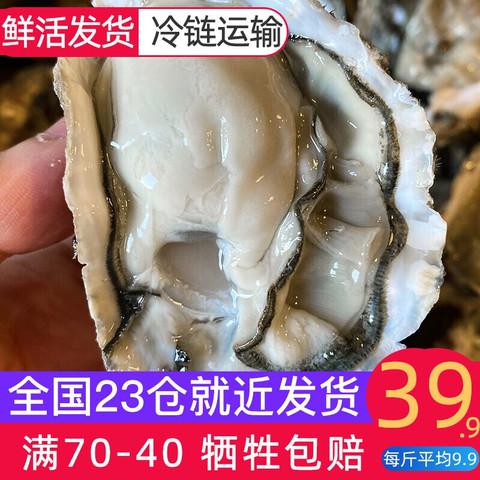 味库 乳山鲜活生蚝 2倍体足肉 海蛎烧烤 净重4斤L号(70g-90g/只)约22-28只