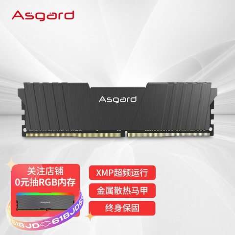 Asgard 阿斯加特 8GB 3200频率 DDR4 台式机内存条 洛极51℃灰-游戏利器/电竞超频/T2