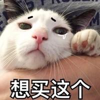 京东国际 宠物主粮 超值进口日