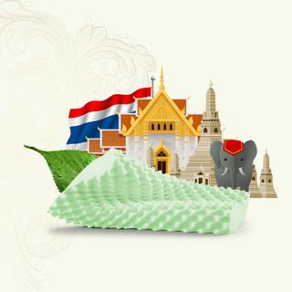 IONTEX 泰国原装进口成人乳胶枕头防螨抑菌透气负离子枕头