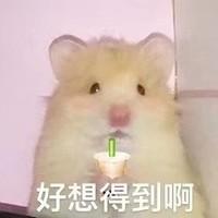 天猫国际直营时尚馆 618时尚狂欢节