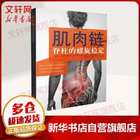 肌肉链 脊柱的螺旋稳定