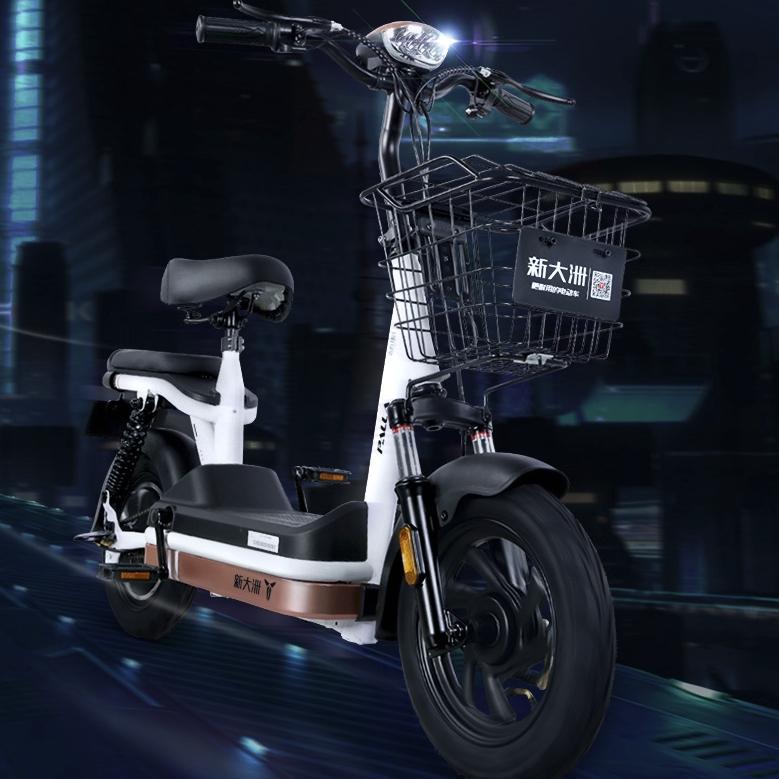 PALLA 新大洲 TDT14Z 电动自行车
