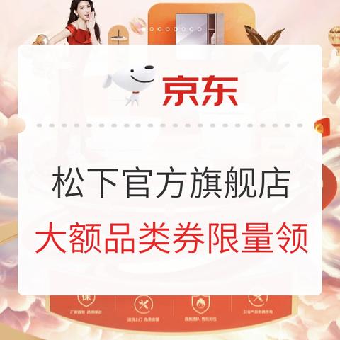 促销攻略:京东 松下 品牌盛典提前狂欢