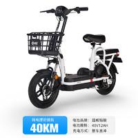 哈啰棒途 TDT-138Z 电动自行车