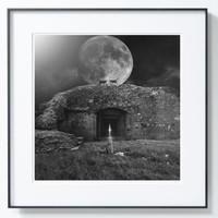 PICA Photo 拾相记 Tomasz Zaczeniuk 作品《月光猫》33 x 33 cm 无酸装裱 限量50版