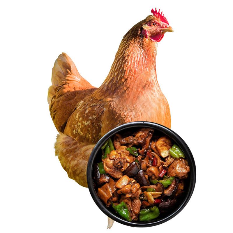 黄河畔 农家散养土鸡700g*2只