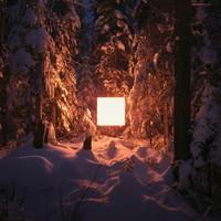 PICA Photo 拾相记 Benoit Paillé 作品《另类风景2号》30 x 33 cm 无酸装裱 限量50版