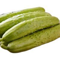 佑嘉木 白玉黄瓜 2.25kg
