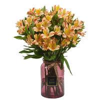 云南鲜花速递 六出百合花 橙色8枝+2枝(送进口保鲜剂)