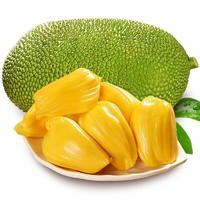 三亚菠萝蜜  13-17斤