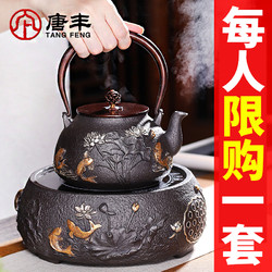 唐丰 铁壶铸铁泡茶专用烧水壶电陶炉煮茶器仿日本手工铁茶壶煮水壶套装