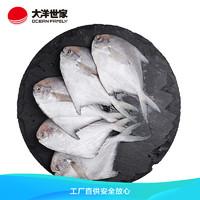 OCEAN FAMILY 大洋世家 舟山精品银鲳鱼1KG/袋(8-10条)平鱼
