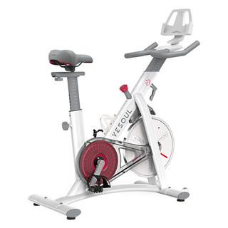YESOUL 野小兽 动感单车家用运动健身房器材磁控超静音S1
