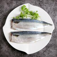 渔港 国产冷冻渤海青花鱼片 500g