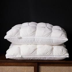 AIDLI 100支95%白鹅绒五星级酒店羽绒枕芯48*74cm(送贡缎枕套和手提包)