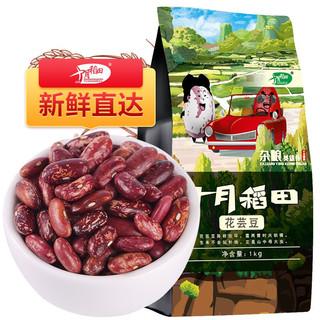 十月稻田 东北花芸豆1kg 农家自产花腰豆粗粮杂粮豆 大米伴侣