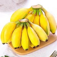 柏馋 广西小米蕉  净重9斤