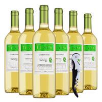 TENPA 天帕 莎当妮/霞多丽 干白葡萄酒 750ml*6瓶 整箱装