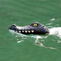 西克里 二合一遥控快艇鳄鱼船