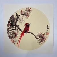 王永明老师花鸟国画《红松富贵鸟》斗方小品38×38cm 100%纯手绘 花鸟 亮之