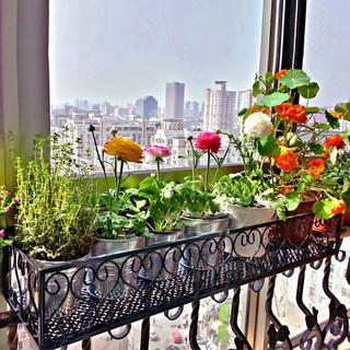 ANERYA 安尔雅 欧式阳台花架花盆 铁艺栏杆多层悬挂式花盆架壁挂绿萝多肉花架