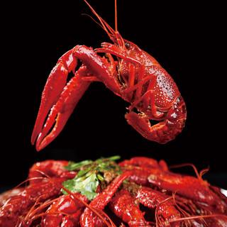 今锦上 麻辣小龙虾 中号 1.5kg