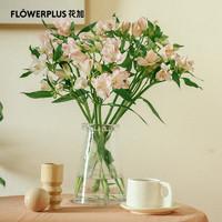PLUS会员:FlowerPlus 花加 沐春风主题花束