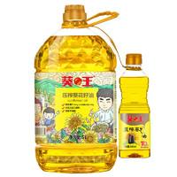 葵王 压榨葵花籽油 5.38L