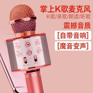 EANE 手机儿童麦克风音响话筒一体K歌 华为苹果手机k歌宝无线蓝牙麦克风变音器