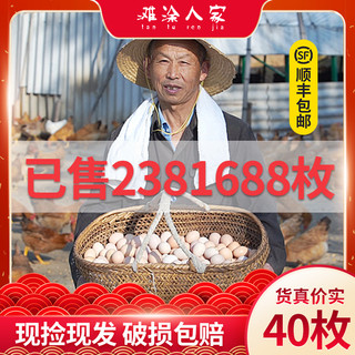 大别山脉淮河岸林正宗散养农家天然40枚草鸡蛋土鸡蛋笨鸡蛋柴鸡蛋