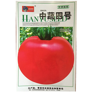 一播大地 四号大番茄种子